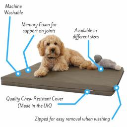 memory-foam-dog-bed-198977.jpg