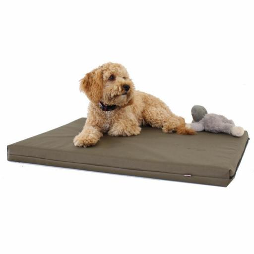 Memory Foam Dog Bed With Cover