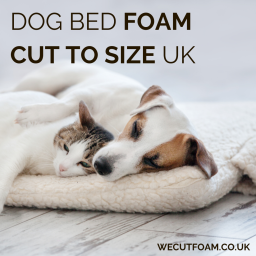 Dog Bed Foam Cut To Size UK - Firm, Medium, Soft & Memory Foam